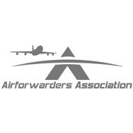 2019 AFA  -  Gray Logo